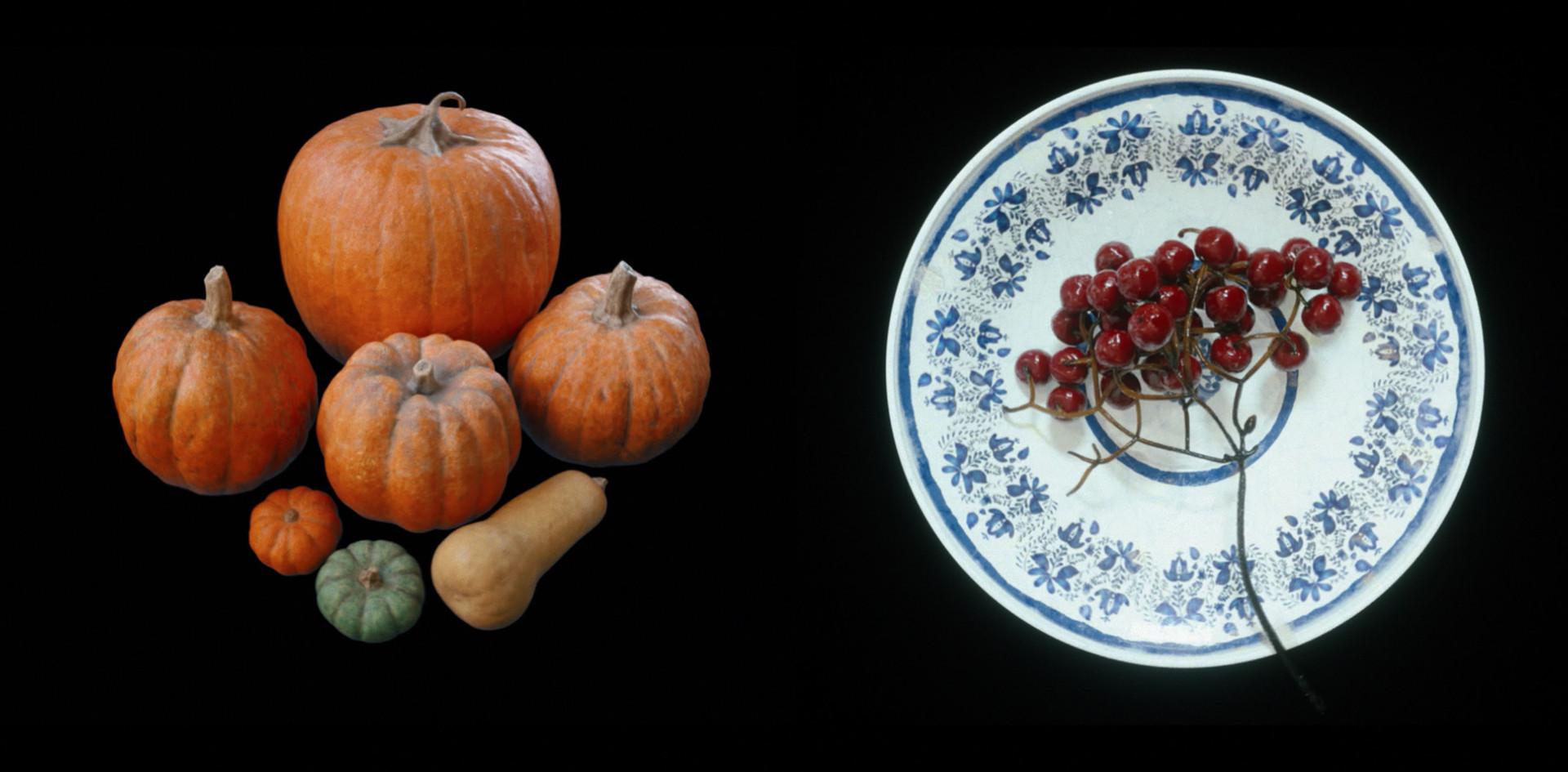 Harvest_WIP_0002